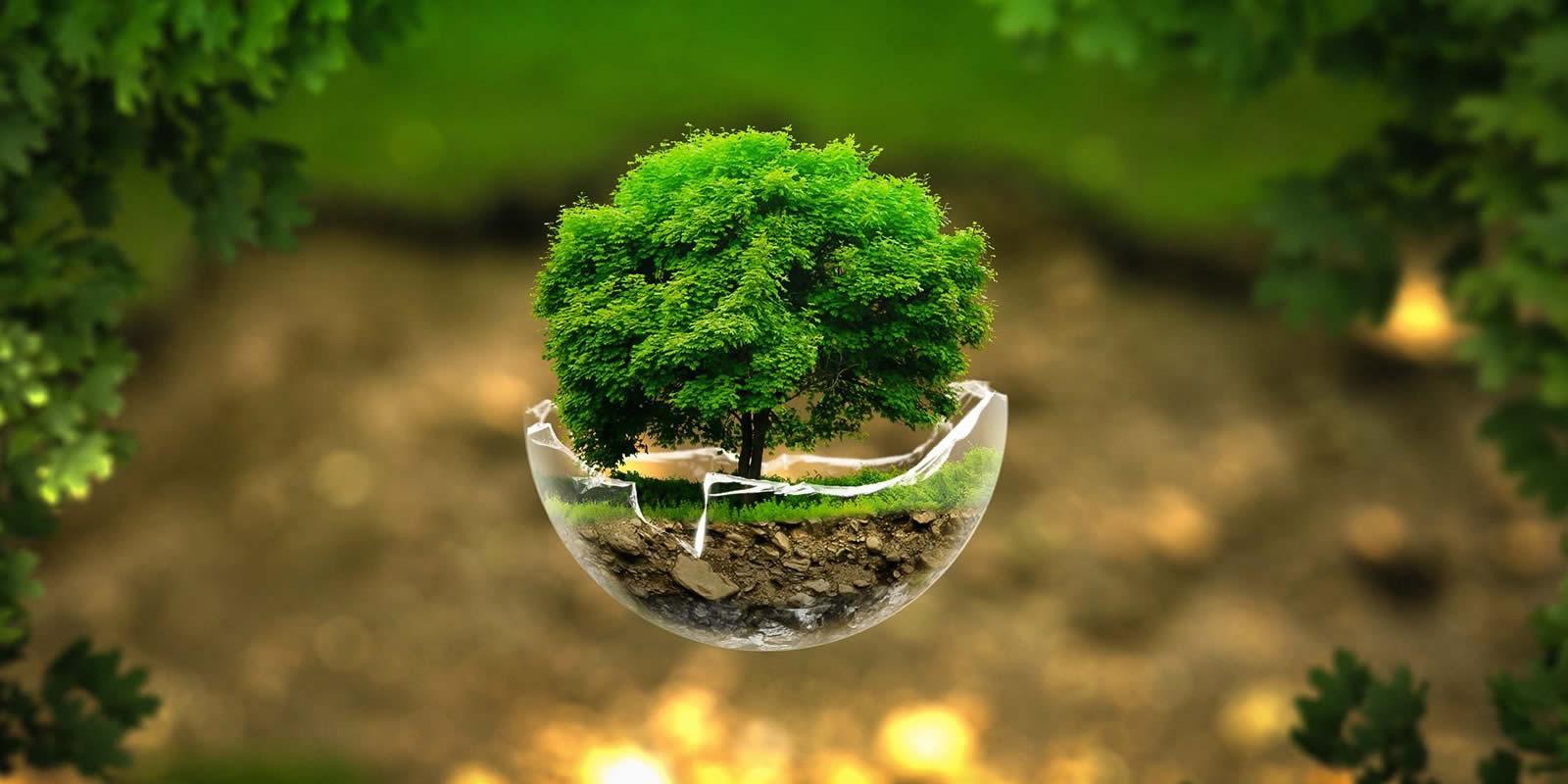 Kết quả hình ảnh cho Green Technology